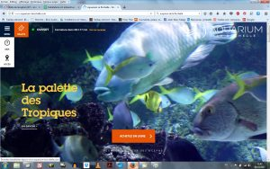 aquarium_rochelle_breves2_id-al_oct2017_infomps